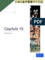 13.PETROQUIMICA.PDF