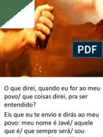 missa sementes - 13-07-2014.pptx