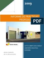 Informe p...docx
