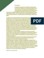 Definicion de un ambiente contaminado.docx