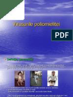 Curs 3 virusologie.ppt