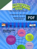 Laorganización del curriculum y sugerencias.pptx