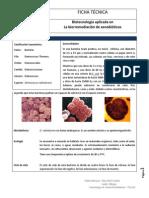 Formato ficha (1).docx