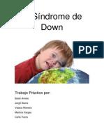 El Síndrome de Down trabajo practico.docx