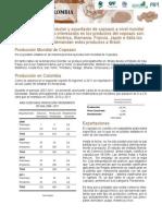 4.ANALISIS SECTORIAL COPOAZU.pdf