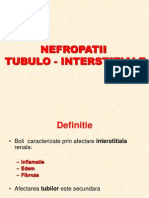 C13 -Nefropatia TubuloInterstitiala Ac Si Cr