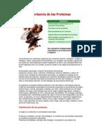 La Importancia de las Proteinas.docx