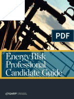 erp_candidate_guide_2014-web.pdf