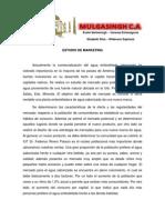 ESTUDIO DE MARKETING.docx