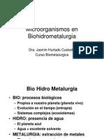 5_MICROORGANISMOS EN MINERIA.pdf