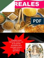 cereales ppt selesccion de imentos.pptx