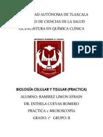 practica 1 lab tisular.docx