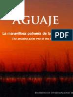 Aguaje.docx