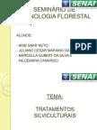 SEMINÁRIO T. F..pptx