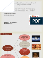Diapositivas de Derechos  Civiles.pptx