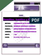 DOM Y ROB TAREA WORD 5 cuartillas.docx