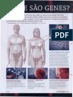 O que são genes.pdf