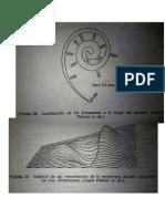 Fonética y Fonología