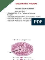 Función Endocrina del Páncreas.ppt