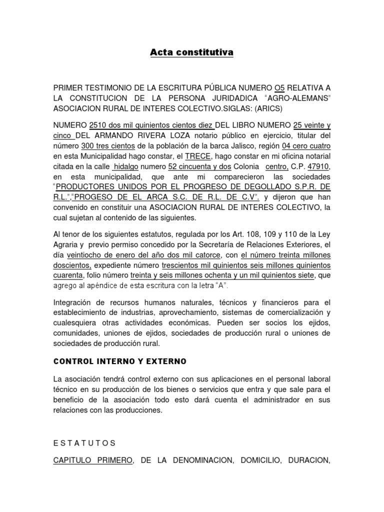 Acta constitutiva 2014.docx