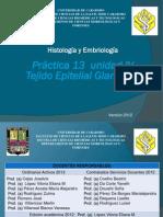 Practica 13.pdf