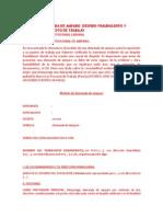 MODELO DE DEMANDA DE AMPARO.docx