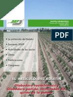 BoletinNum68.pdf