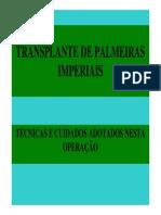 Transplante_palmeiras.pdf