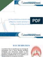 expo morfo 3 (1).pptx