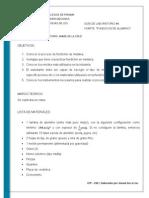GUIA #4.1.pdf