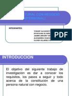 PERSONA NATURAL CON NEGOCIO DIAPOS NEW.pptx
