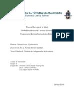 P4. CINÉTICA DE HALOGENACIÓN DE LA ACETONA..docx