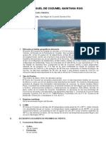 Todo de Cozumel.pdf