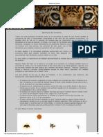 Solsticio de invierno.pdf