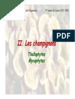 Champignons Thallophytes Mycophytes
