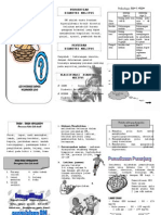 Leaflet Diabetes Militus.docx