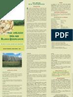 CHUSCA 2 PDF.pdf
