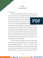 Analisis-Faktor-faktor-yang-Mempengaruhi-Lamanya-Penyelesaian-Audit-(Audit-Delay)-pada-Perusahaan-Publik-Di-Indonesia-(Studi-Empiris-pada-Perusahaan-Manufaktur-dan-Finansial-yang-Listing-di-BEJ).pdf
