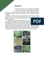 Endapan hydrothermal