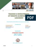 Vedanta-HR.docx