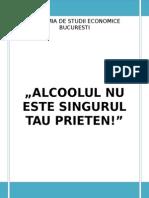 proiect pr final (1).doc