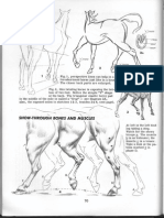 5_-Drawing-Jack-Hamm-How-to-Draw-Animals.pdf