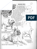 6_-Drawing-Jack-Hamm-How-to-Draw-Animals.pdf