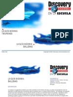 ballenas (guía con respuestas).pdf
