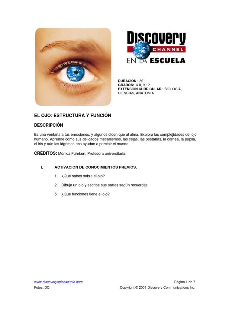 el ojo (guía con respuestas).pdf