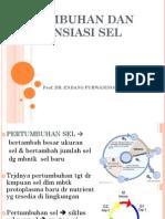 PRTMBHAN DAN DIFRNSIASI SEL.pdf