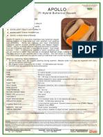 APOLLO butternut.pdf