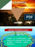 Triada Ecologíca - Causalidad y Multicausalidad.pptx