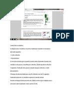 examen-parcial-automt.docx
