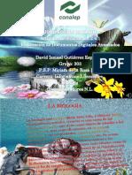 la-biologia.pdf